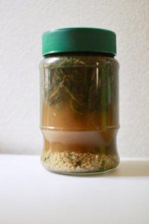 乾燥よもぎ乳酸菌の作り方3
