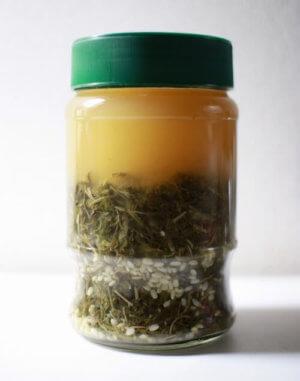 乾燥よもぎ乳酸菌の作り方2
