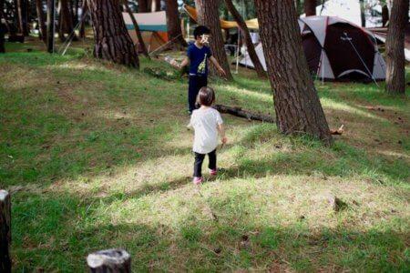 松林で遊ぶ子どもたち