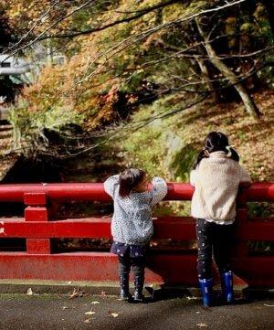 弥彦神社の橋に佇む子供