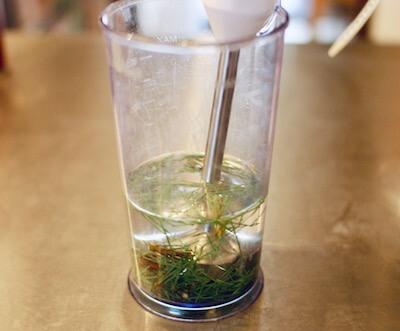 松葉ジュースの作り方